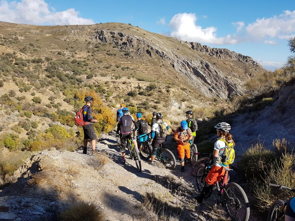 Group mountain bike trips