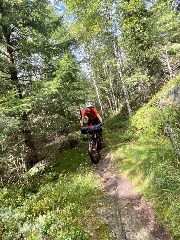 Singletrack bikepacking