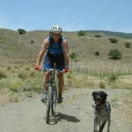 Happy biking dog