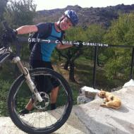 Mountain Bike Holiday Cat